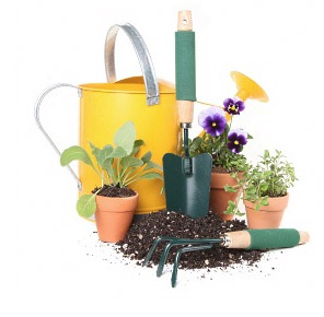 lawn garden supply speculator ny